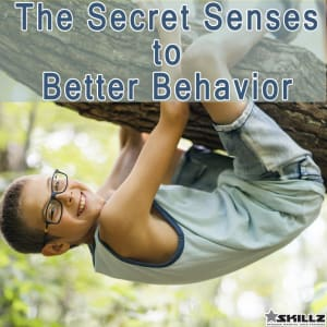 Parenting Blog:  The Secret Senses to Better Behavior