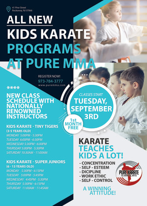 Pure MMA Teams Up With NJMAA For All New Kids Karate In Rockaway