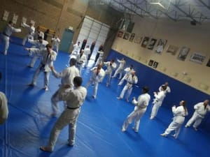 Tae Kwon Do vs. Brazilian Jiu-Jitsu