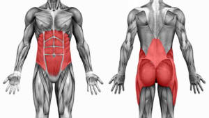 Personal Training in South Spokane - Catalyst Fitness - Why Core Stiffness Matters over Strength