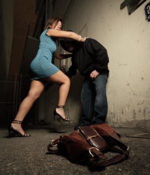 Women's Self Defense Krav Maga Style- Part 4 Putting It All Together: Sheep or Sheepdog?