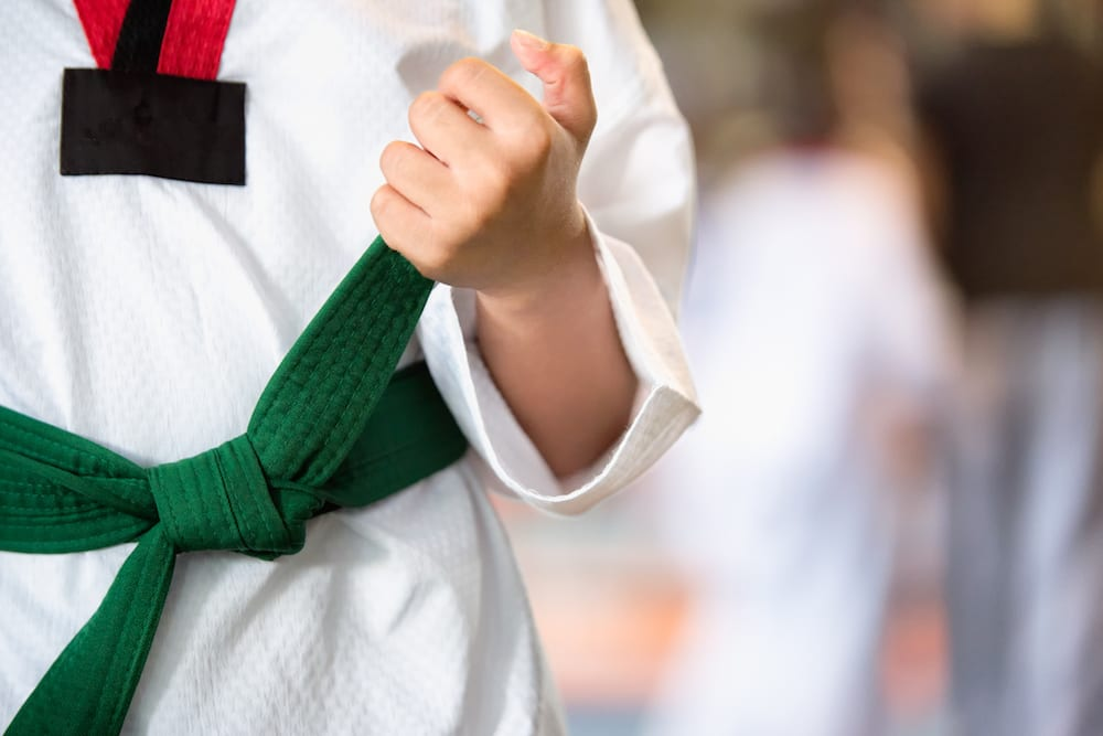 Kids Martial Arts near Timonium