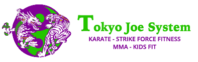 Kids Martial Arts Belmont