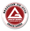 Kids Martial Arts near  Burton - Gracie Barra Burton