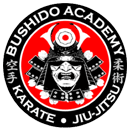 in Kingsport - Bushido Mixed Martial Arts