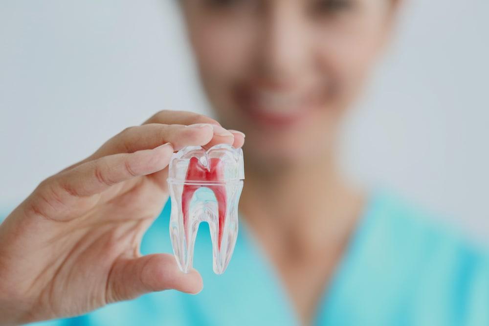 General Dentistry near Sulphur