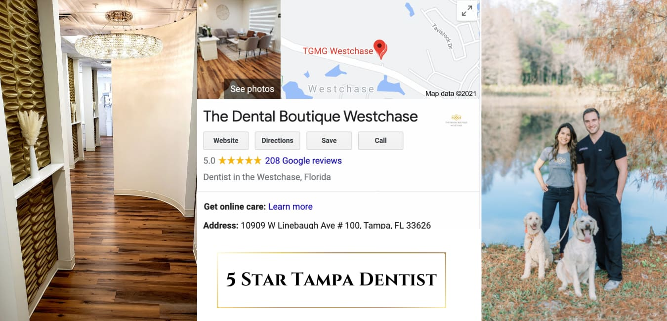 <style> h1 {   text-shadow: 2px 2px 8px #1e2a55; } </style>Luxury Meets Family Dentistry in Tampa