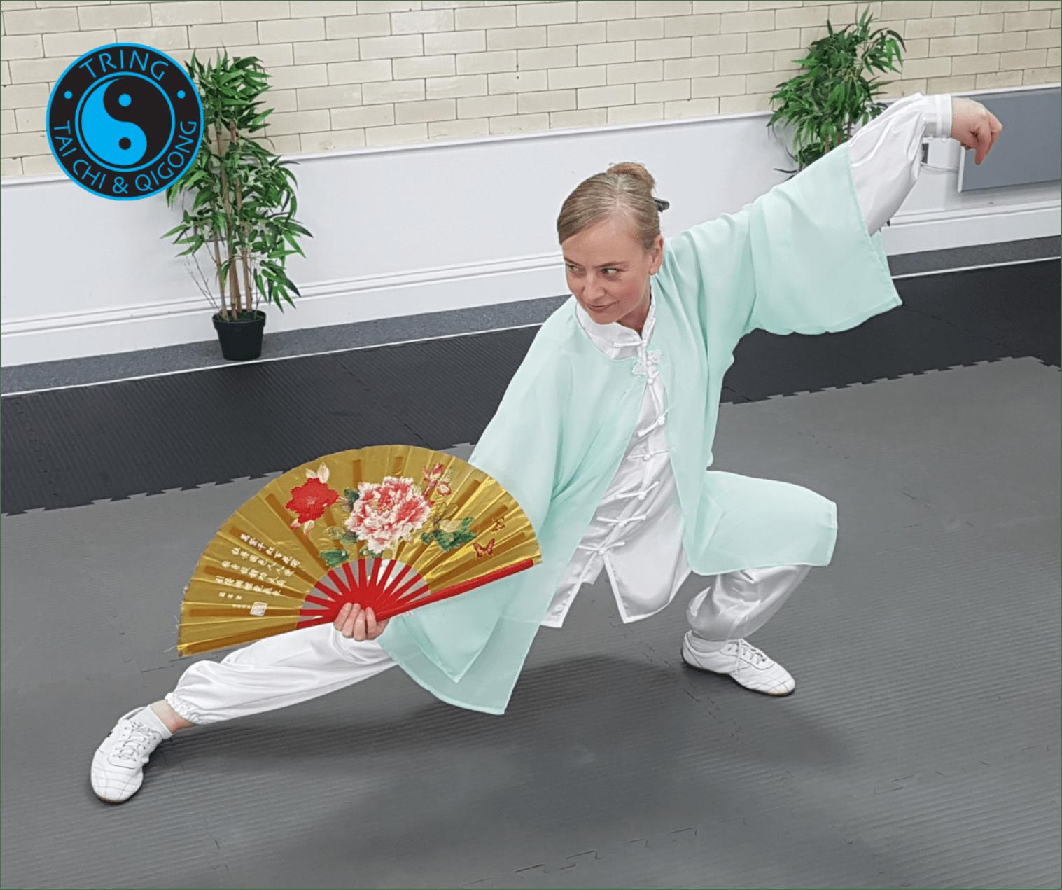 Tai Chi Fan Training coming soon to Tring Tai Chi