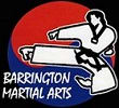Kids Martial Arts in Barrington and Palatine - Barrington Martial Arts
