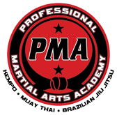 Kids Karate in Derry - Professional Martial Arts Academy