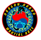 Kids Martial Arts in Gresham - Dragon Brand Martial Arts