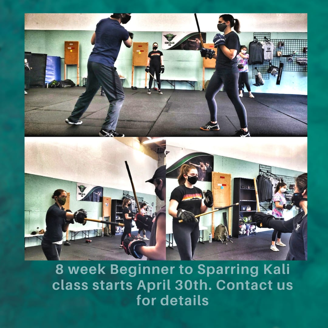 8 Week Stick Fighting Class in Salem