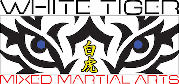 Kids Martial Arts  in Wayne - White Tiger Martial Arts