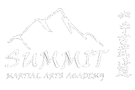 Kids Martial Arts in Delaware - Summit Martial Arts