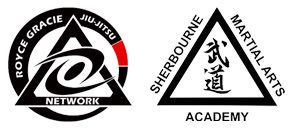 Kids Camps And Birthdays  in London  - Sherbourne Martial Arts Academy