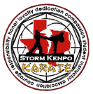 Kids Martial Arts in North Richland Hills - Texas Storm Kenpo Karate