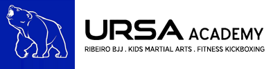 Kids Martial Arts in Ann Arbor - URSA Academy