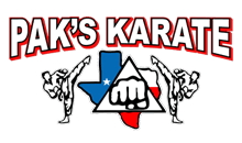 Kids Martial Arts Willis