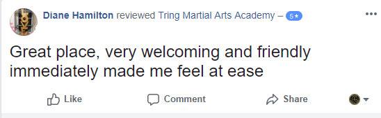 Diane Hamilton, Tring Martial Arts Testimonials