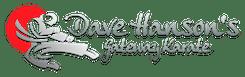 in St. Louis - Dave Hanson's Gateway Karate