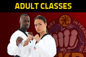 Adult Martial Arts in Novi - Ayerst Choi Kwang Do