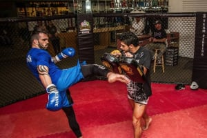 Muay Thai  in Reading  - Pereira Bjj