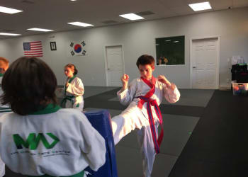 kids martial arts ocala