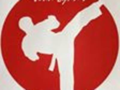 Kids Karate near Rhyl