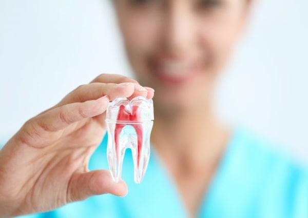 General and Family Dentistry near Garner