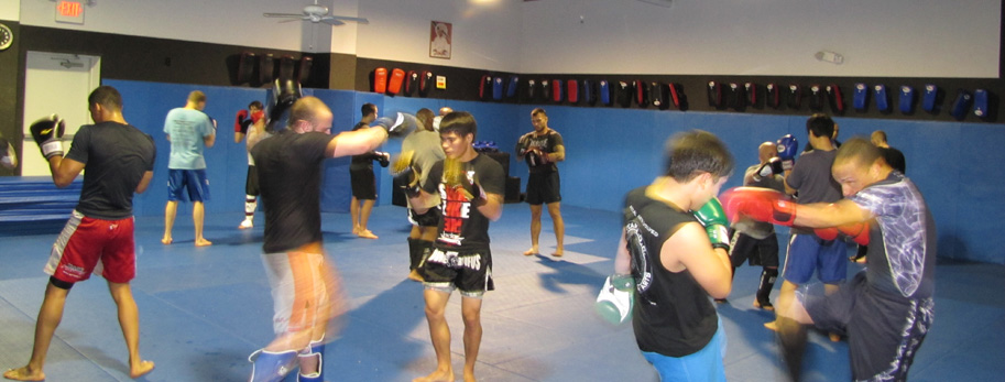 Image result for fayetteville mixed martial arts