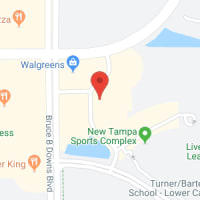 Kids Martial Arts near New Tampa