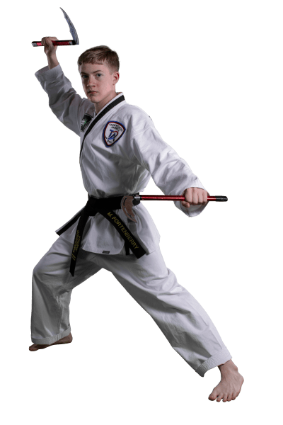 Kids Taekwondo near Arab