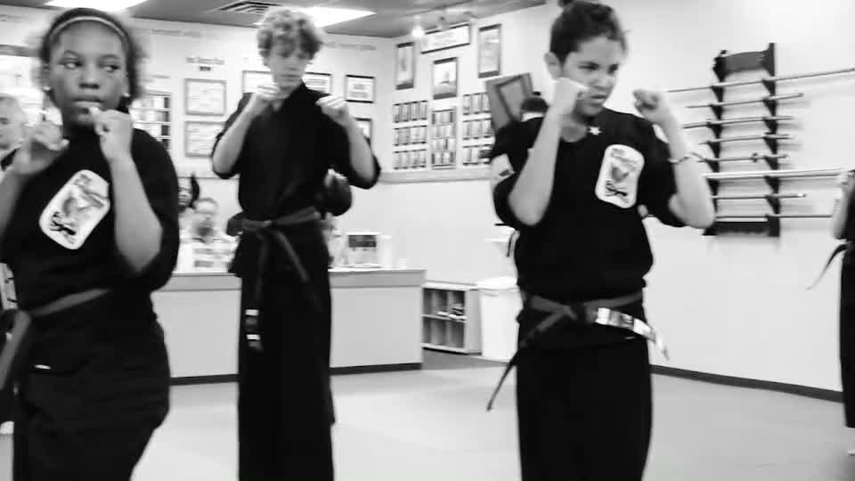 USA Professional Karate Studio - Krav Maga Classes - Pittsburgh