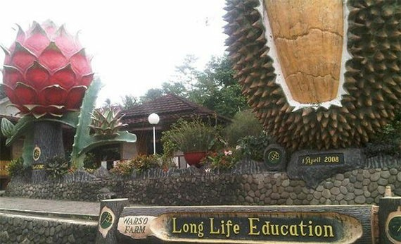 Warso Farm - Tempat Wisata di Bogor