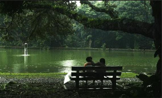 Kebun Raya Bogor - Tempat Wisata di Bogor