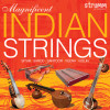 Image of Magnificent Indian Strings