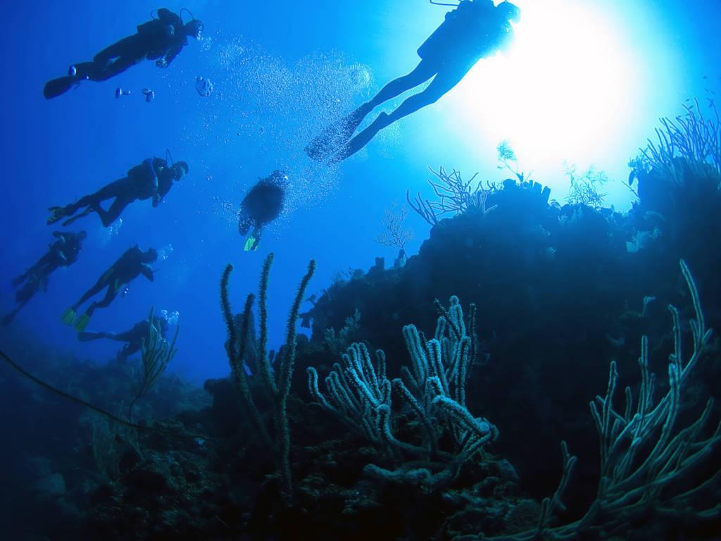 turks-e-caicos-diving