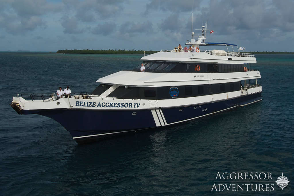 belize-aggressor-IV