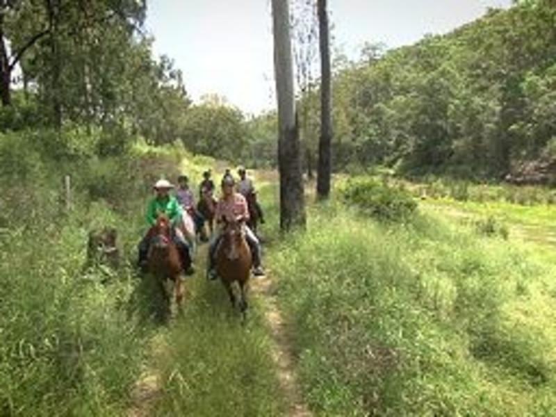 Fordsdale Farmstay/Fordsdale Horseback Adventures.