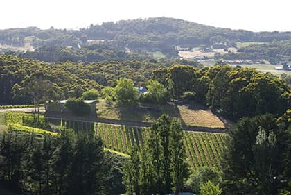 Adelaide Hills Region Image