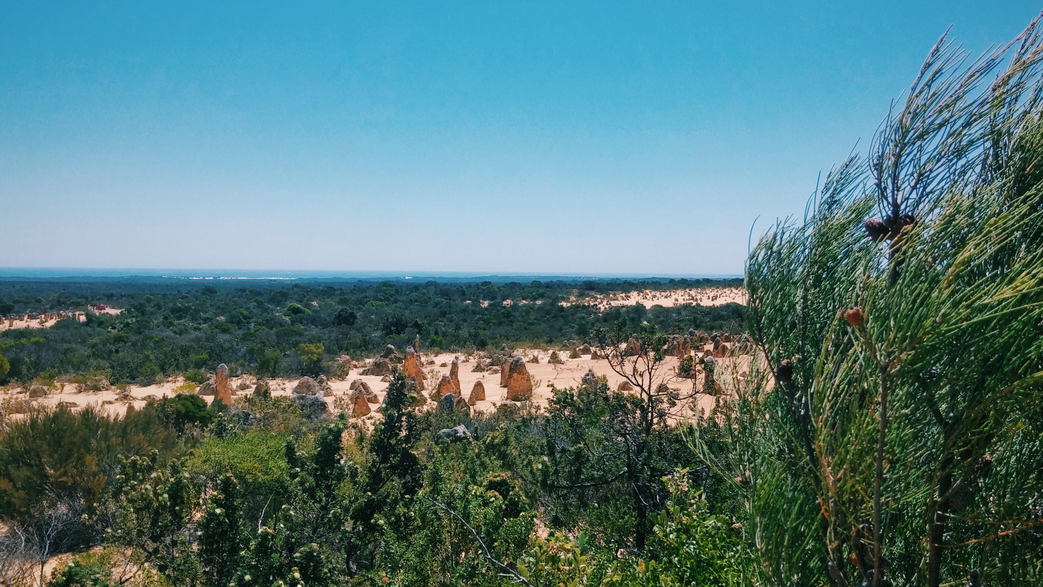 Golden Outback Region Image