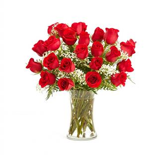 I'm Yours Two Dozen Red Roses