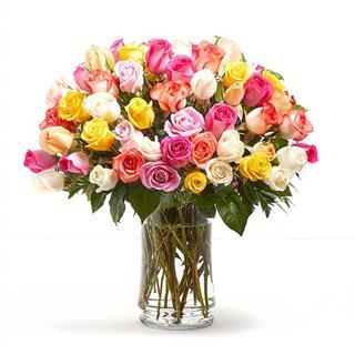 Love Knows No Bounds - 5 Dozen Coloured Roses