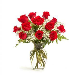 Timeless - One Dozen Red Roses