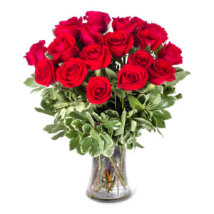 Red Roses!