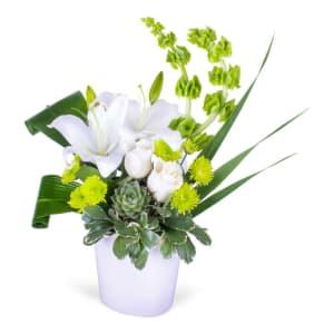 Lily & Succulent Arrangement