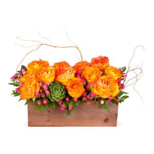Rustic  Orange Rose Arrangment