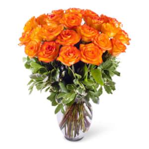 Orange Rose Hues!
