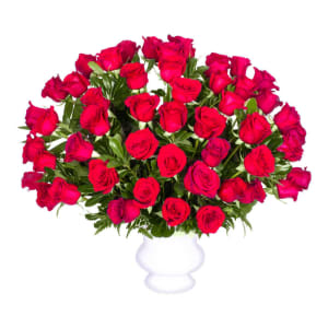 Red Rose Tribute