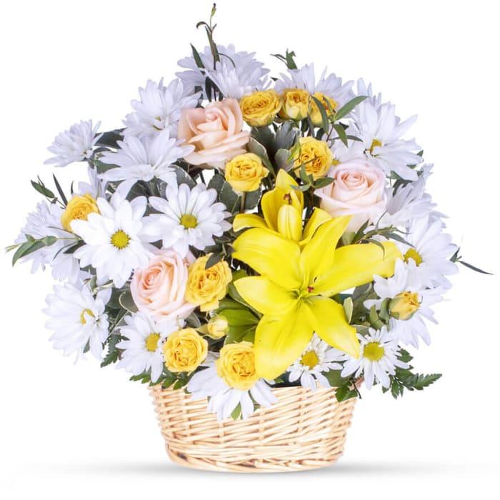 Basketful of Daisies